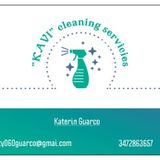 Professional House Cleaner Available Immediately