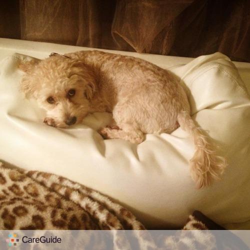 Pet Care Provider Ashley Maher's Profile Picture