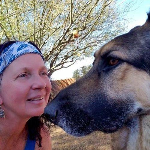 Pet Care Provider Pamela S's Profile Picture