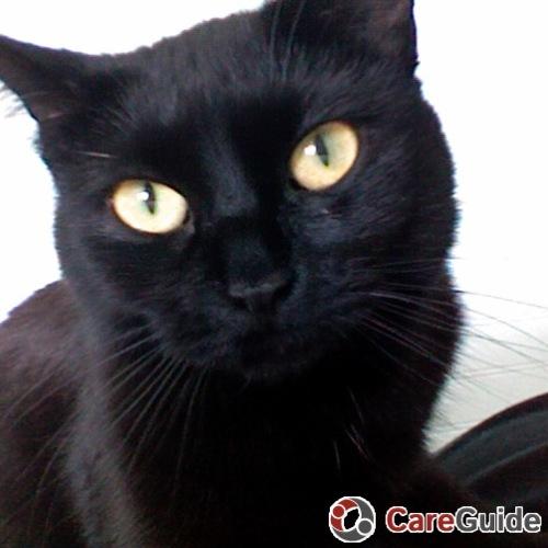 Pet Care Provider Renee McClellan's Profile Picture
