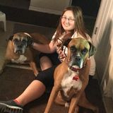 For Hire: Experienced Pet Sitter in Springhill, Florida