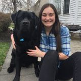 Hi! I am Makayla and I am looking to be a pet sitter.