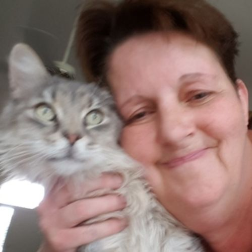 Pet Care Provider Sarah Jenkins's Profile Picture