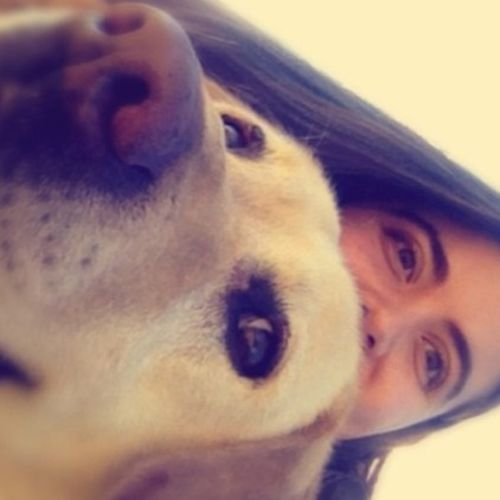 Pet Care Provider Sabrina A Gallery Image 3