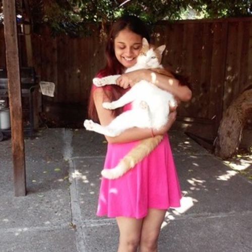 Pet Care Provider Krishna Patel Gallery Image 1