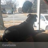 Dog Walker, Pet Sitter in Wichita