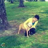 Dog Walker, Pet Sitter in Turlock