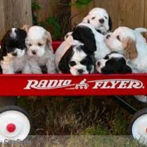 Pet Care Provider Shirley W's Profile Picture