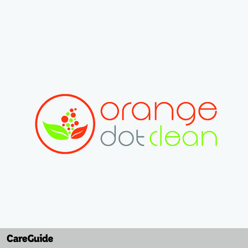 Housekeeper Provider Orange Dot Clean's Profile Picture