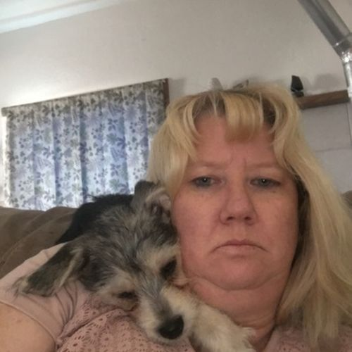 Pet Care Provider Sharleen Z's Profile Picture
