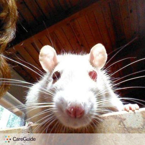 Pet Care Provider Anna Werner's Profile Picture