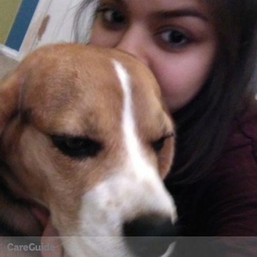Pet Care Provider Virinca J's Profile Picture