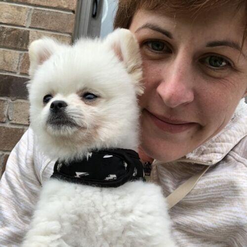 Pet Care Provider Lindsay H's Profile Picture