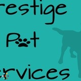 Dog Walker, Pet Sitter, Kennel in Chicago