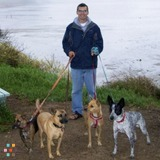 Dog Walker, Pet Sitter in San Luis Obispo