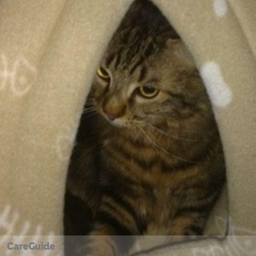 Pet Care Provider Takara C's Profile Picture
