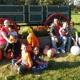 Babysitter, Daycare Provider in Kokomo