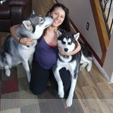 Pet Sitter in Colorado Springs