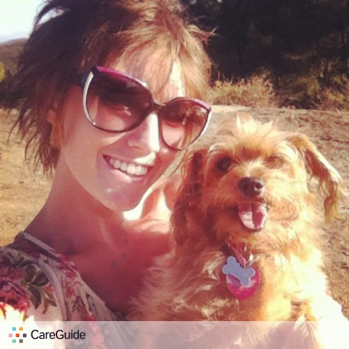 Pet Care Provider Lorren Holliday's Profile Picture