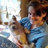 Dog Walker, Pet Sitter in Worcester