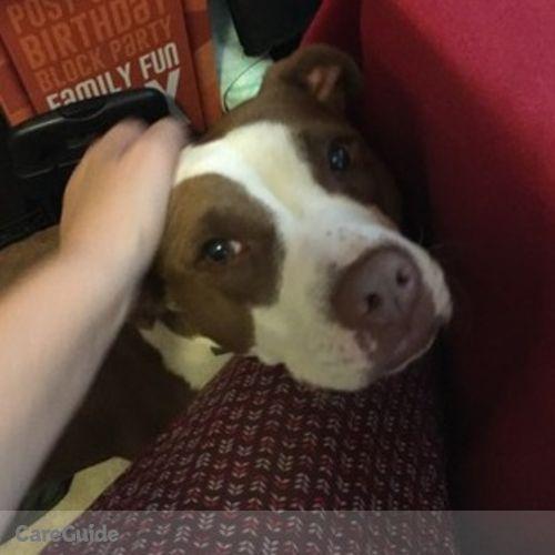 Pet Care Job Leyton P's Profile Picture