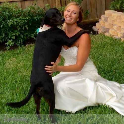 Pet Care Provider Nicole Rush's Profile Picture