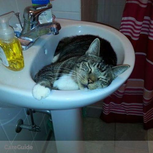 Pet Care Provider Linda Canapp's Profile Picture