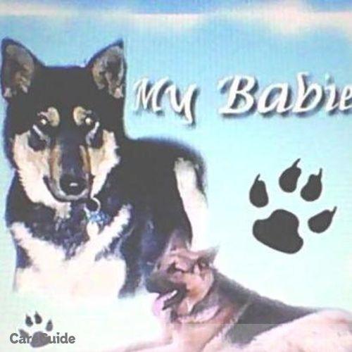 Pet Care Provider Michelle Alfaro's Profile Picture