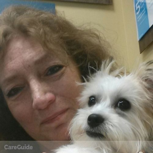 Pet Care Provider Anna Ballatore's Profile Picture