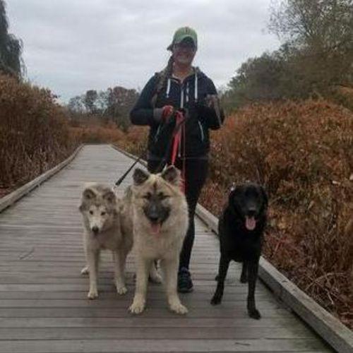 Pet Care Provider Casey Schievink's Profile Picture