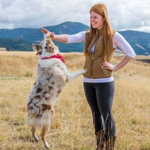 Pet Care Provider Sara L Gallery Image 1