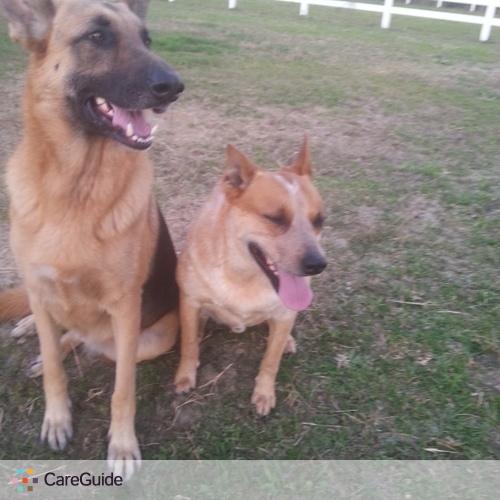 Pet Care Provider Tammy Lot's Profile Picture