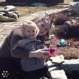 Babysitter, Nanny in Shelburne