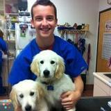 Dog Walker, Pet Sitter in Fair Oaks