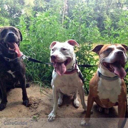 Pet Care Provider Jamie W's Profile Picture