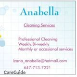 Anabelle cleaning services