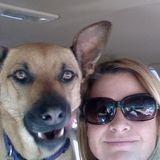 Dog Walker, Pet Sitter, Kennel in Louisville