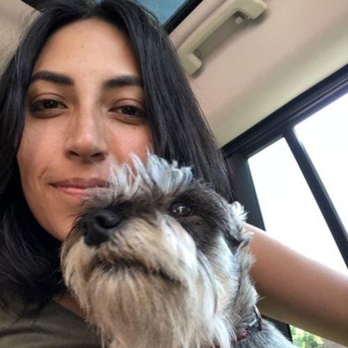 Pet Care Provider Anahi p's Profile Picture