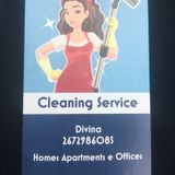 Knowledgeable Cleaner