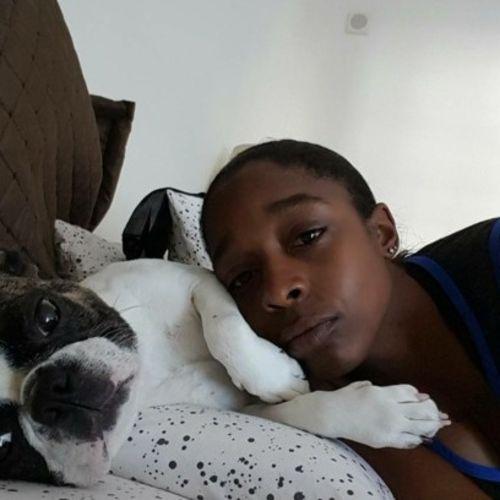 Pet Care Provider Jene H's Profile Picture