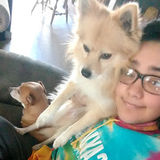 Pet Sitting Offered in Reedley