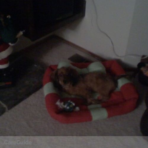 Pet Care Provider Allison Heupel's Profile Picture