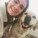 Dog Walker, Pet Sitter in Poughkeepsie