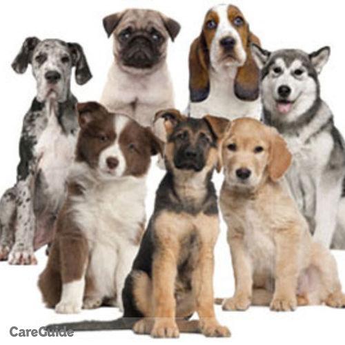 Pet Care Provider Katie Robinson's Profile Picture