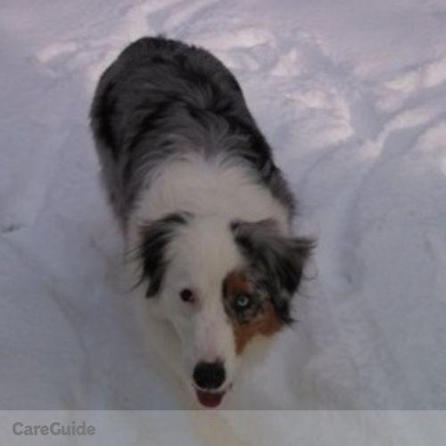 Pet Care Provider Angelica Pawl's Profile Picture