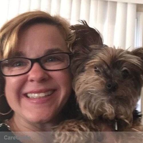 Pet Care Provider Aimee Valentine's Profile Picture
