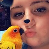Im an experienced bird owner and sitter
