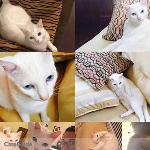 Pet Care Provider Tara Schanks's Profile Picture