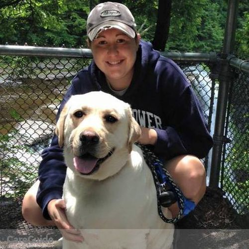 Pet Care Provider Kristen Stratton's Profile Picture