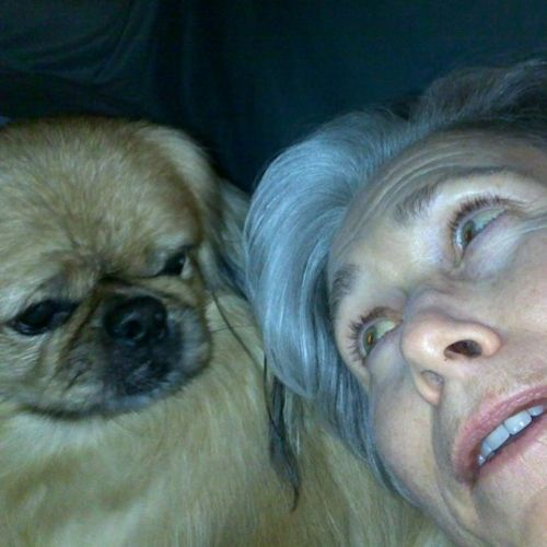 Pet Care Provider Kathleen E's Profile Picture
